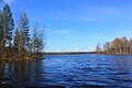 Озеро кондозеро - panoramio.jpg