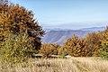 Осінь на Явірнику.jpg