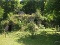 Отроківський дендропарк, грота у парку Мархоцького.jpg