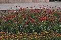 Пам'ятник «Героям Визвольної війни Українського народу 1648–1654 рр Вид 13.jpg