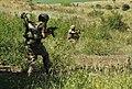 Підготовка вогнеметників в районі проведення операції Об'єднаних сил (42684498804).jpg