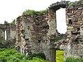 Руїни Підзамочківського замку.jpg