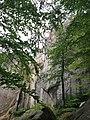 Скелі Поляницького регіонального парку на Івано-Франківщині (2).jpg