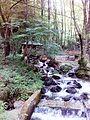 Смоларски водопад 18.jpg