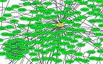 Фрагмент сети взаимодействия белков из M. tuberculosis, визуализированной в Cytoscape.jpg