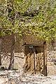 درخت و خانه.jpg