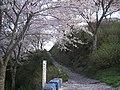 うつぶな公園 - panoramio (3).jpg