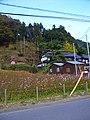 トトロ - panoramio.jpg