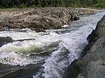 加古川万歳橋下流の瀬P9170106.jpg