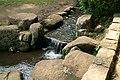 東高根森林公園 - panoramio (15).jpg