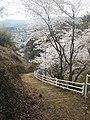 正福寺山公園に上る歩道 - panoramio.jpg