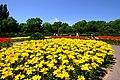 百合が原公園(Yurigahara park) - panoramio (7).jpg