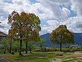 阿田峯公園にて 2013.5.02 - panoramio.jpg