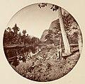 -Yosemite National Park, California- MET DP136826.jpg
