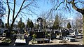 - Cmentarz Nowofarny - panoramio (30).jpg
