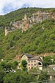 00 0425 Les Vignes - Gorges du Tarn.jpg