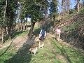 01020 Bomarzo, Province of Viterbo, Italy - panoramio (1).jpg