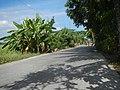 0125Views of Lumang Bayan irrigation canals 49.jpg