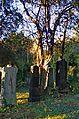 014 - Wien Zentralfriedhof 2015 (22605169873).jpg