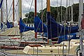 03 Sporthafen Kiel (17824941175).jpg
