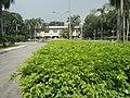 120Mehan Garden Ermita Manila 08.jpg