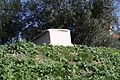 1472 - Keramikos cemetery, Athens - Gravestone for Ipparetea - Photo by Giovanni Dall'Orto, Nov 12 2009.jpg