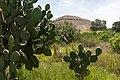 15-07-13-Teotihuacán-RalfR-N3S 9269.jpg
