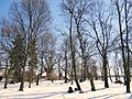 160313 Manor Park in Rybno - 05.jpg