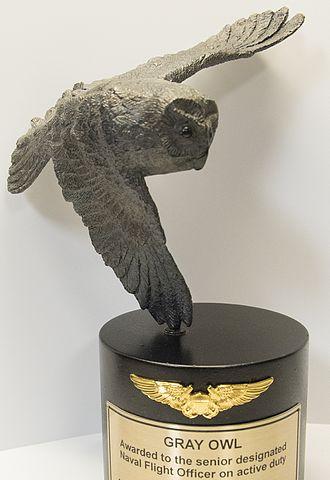 Gray Owl Award - A Gray Owl Award.