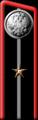 1904mid-petlp14.png