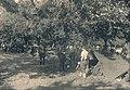 1940 Fin Mai début Juin - Camp de prisonniers d'ysendyk - Pays-Bas (5).jpg