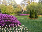 Park and flowers at Sherwood Gardens, Guilford, Baltimore.