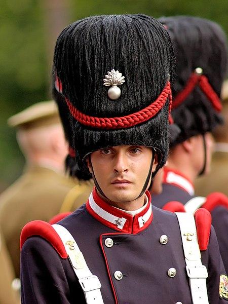 File:1st Sardinia Grenadiers Bastille Day 2007 n1.jpg