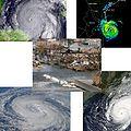 2005 AHS collage.jpg