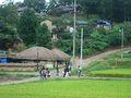 2007-Korea-Gyeongju-Yangdong Village-03.jpg