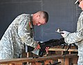 2011 Army National Guard Best Warrior Competition (6026032113).jpg