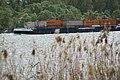 2012.09.24.143050 Schiff Container Rhein Walluf.jpg