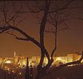 20120916-IMG 0001מצודה ועץ.jpg
