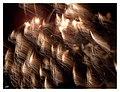 2015-08-22 FLAMMENDE STERNE - Feuerwerk von Philippinen 12.jpg