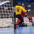 20170112 Handball AUT CZE 5952.jpg
