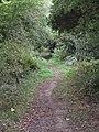 2018-09-12 'The Green' Paston Way footpath, Knapton (4).JPG