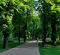 20190502 Park na Wyspie Małgorzaty w Budapeszcie 0729 1895 DxO.jpg