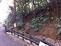 2 Chome Jindaiji Minamimachi, Chōfu-shi, Tōkyō-to 182-0013, Japan - panoramio (2).jpg