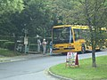 365-ös busz, Vác.jpg