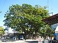 6592San Jose del Monte City Bagong Buhay Hall Chapelfvf 29.JPG