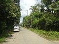 9759Poblacion III Del Carmen, Alaminos, Road 14.jpg