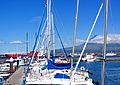 Açores 2010-07-18 (5043890362).jpg