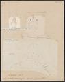 Aëtobatis narinari - 1700-1880 - Print - Iconographia Zoologica - Special Collections University of Amsterdam - UBA01 IZ14200125.tif
