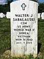 ANCExplorer Walter James Sabalauski grave.jpg