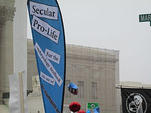 Secular Pro-Life - A Secular Pro-Life banner at the March for Life in Washington, D.C. in 2013